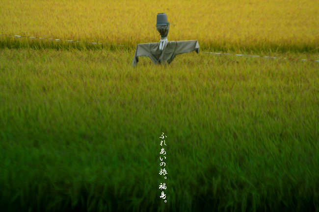 IMG_7766のコピー.jpg